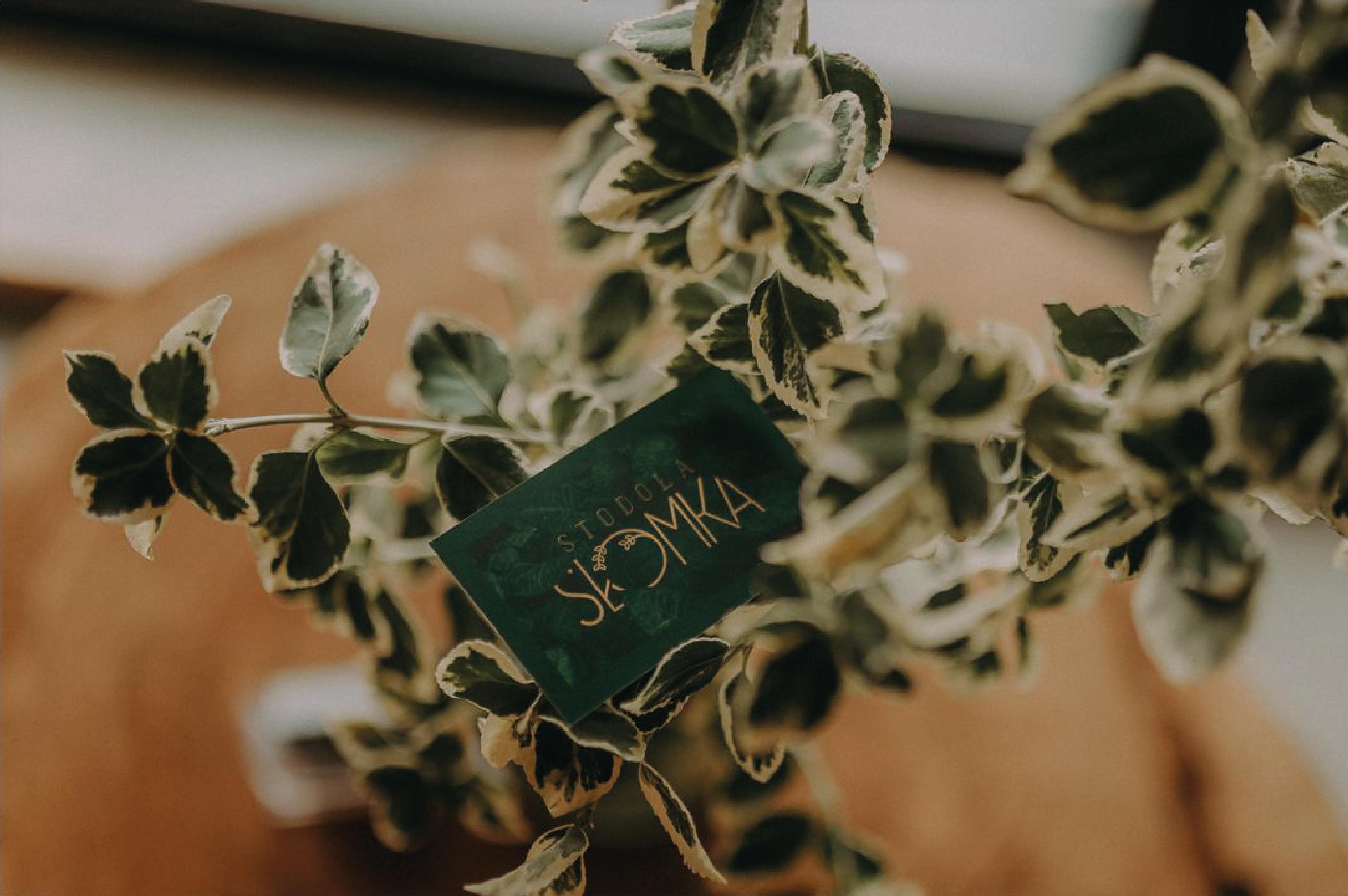 """Obraz przedstawia, kwiat leżący na stole. W kwiat wpleciona jest wizytówka """"Stodoła Słomka"""""""
